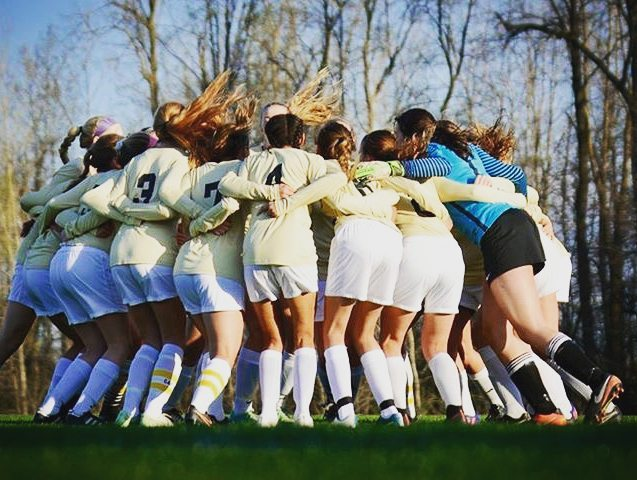 Our District champs now look to conquer Regionals! Come cheer the girls on tonight at Spring Arbor! #LcsSoccer #LCS_HaveItAll #LCSgram